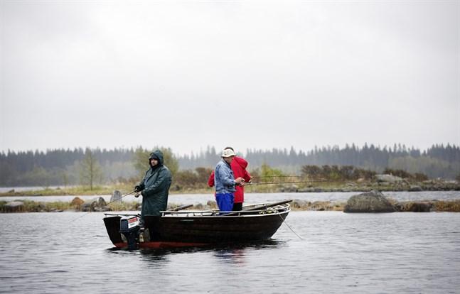 Tre lettländska turister är på besök i världsarvet för att fiska gädda. Just gäddor finns det gott om i vattnen runt Björkö, säger fiskeguiden Jukka Viita-aho.