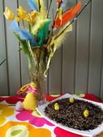 För tidigt köpta tulpaner och för sent sått gräs, men glad påsk för det!