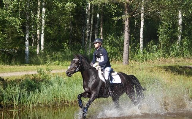 Image result for amanda nygård De almendra